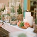 130x130 sq 1390610696431 mexican centerpiece tablescape succulents wedding