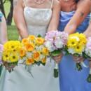 130x130 sq 1373372133118 daisies