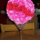 130x130_sq_1248349555818-flowers2009012