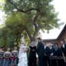 96x96 sq 1370151850093 wedding officiants big weddings los angeles