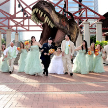 220x220 sq 1478800360033 wedding party chased by t rex