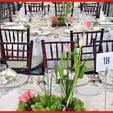 130x130 sq 1282837492153 eventdecor3