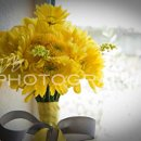 130x130 sq 1294262416985 weddingwire5