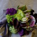 130x130_sq_1282352874908-bridalbouquetpurple3