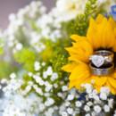 130x130 sq 1397011449560 xanadu dummert wedding photography 4