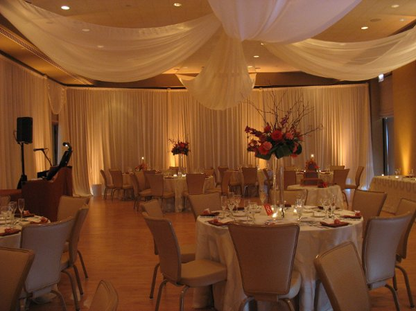 photo 7 of Elegant Event Lighting