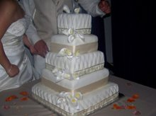 220x220 1275872990675 weddingcake