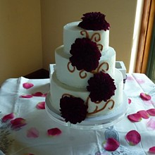 220x220 sq 1291930766372 bridalshowercake