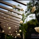 130x130 sq 1342127014229 austinweddingphotographer025