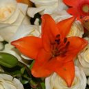 130x130 sq 1290879519538 flowercf10.10