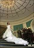 photo 8 of Diva Weddings by Triple Crown Entertainment