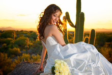 220x220_1394818787480-fable-wedding