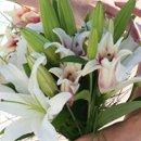 130x130 sq 1276994744608 flower205