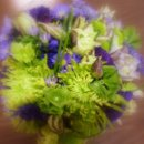130x130_sq_1277318069991-goetteweddingbouquet