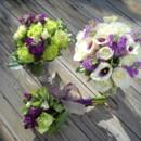 130x130 sq 1467121949392 vibrant green with picaso calla lilies