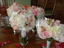 220x220 1366821061000 bride hydrangea rose orchid and bridesmaid 800x600
