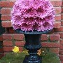 130x130 sq 1277778866223 flowerballs