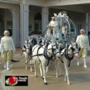 130x130 sq 1425597237852 bride with ponies osc