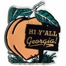 Hi Y'all from Georgia! This souvenir magnet is a great way to welcome guests - Southern style!