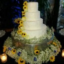 130x130 sq 1452640306757 mooshus textured frosting glitter sunflowers weddi