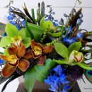 130x130 sq 1291333946128 orchidcenterpiece