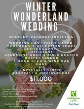 220x220 1473533011471 1473533002777 winter wonderland wedding promotion