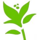 130x130 sq 1379430509752 lilly lane logo  just flower