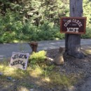 130x130 sq 1383355021858 crow creek mine weddin