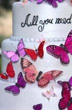 220x220 1280186670546 butterflies