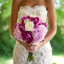 130x130_sq_1338408427035-bridewithpinkbouquet