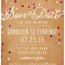 220x220 sq 1427501640164 rustic confetti save the date magnet copy