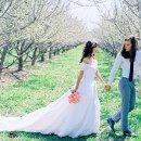 130x130_sq_1336451843119-weddingone