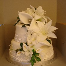 220x220 sq 1293735531750 wedding3d
