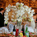130x130 sq 1399053839866 orchid
