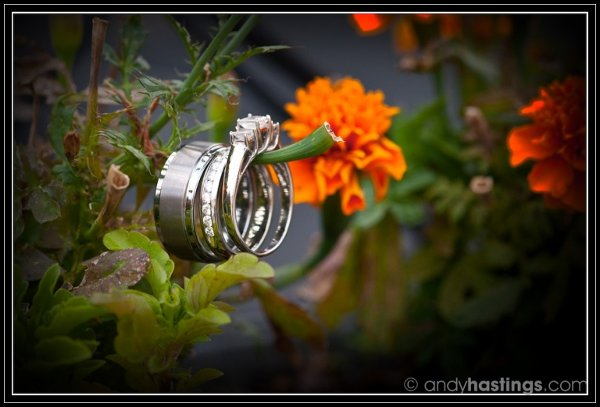 1311774238665 JustineSteveT2331024x696 Kutztown wedding photography