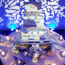 when to cut wedding cake at the reception vividlite wireless led lighting lighting amp decor san 27126