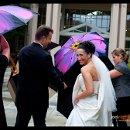 130x130 sq 1332365512635 umbrellas