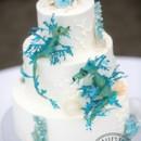 130x130 sq 1469465534547 sea dragon cake