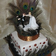220x220 sq 1282523198167 peacockweddingcake013