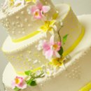 130x130 sq 1282671792322 weddingcake1