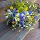 130x130 sq 1380081065101 delphinium wildflower bouquet 1