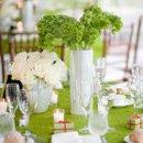 130x130 sq 1355705719241 simplegreenweddingflowerscenterpieces