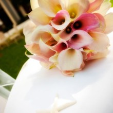220x220 sq 1465527900060 05hawaiiwedding
