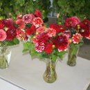 130x130 sq 1285108986232 flowers011