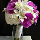 130x130 sq 1450305113741 lavender phalaenopsis bb
