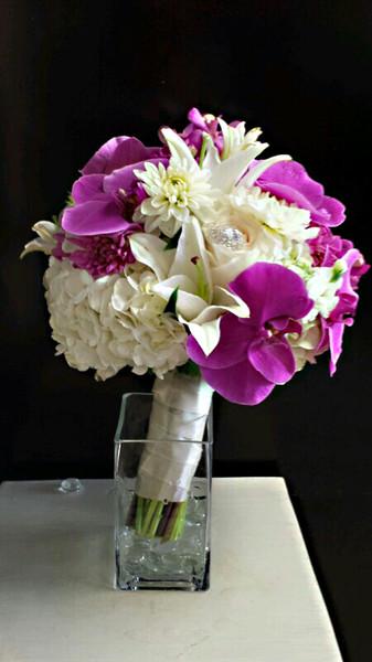 600x600 1450305113741 lavender phalaenopsis bb