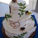130x130_sq_1349108652402-birchbarkcake