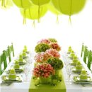 130x130 sq 1285202863563 pinkandgreenweddingreception