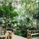 130x130 sq 1362059846078 garden
