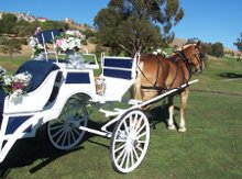 Buzzard's Roost Carriage Rides photo